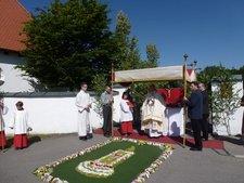 Fronleichnamsprozession von 2014 Der Pfarrer vor einem Blumenteppich